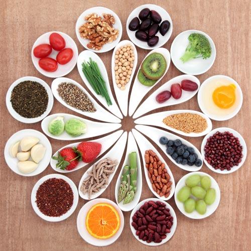 Calgary-Nutrition-Services